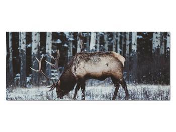 Obraz - jeleň v zime (V020179V12050)