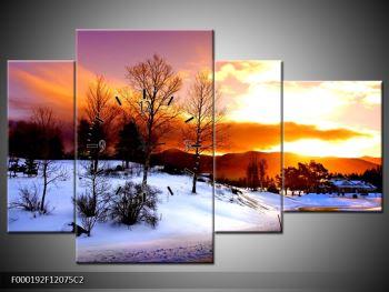 Obraz zimní krajiny (F000192F12075C2)