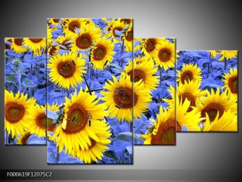 Obraz slunečnic (F000619F12075C2)
