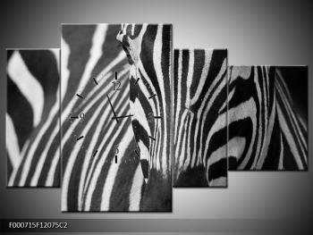 Obraz černobílého detailu zebry (F000715F12075C2)