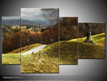 Obraz podzimního pahorku (F001650F12075C2)