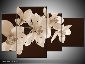 Krásný obraz bílých květin (F001888F12075C2)
