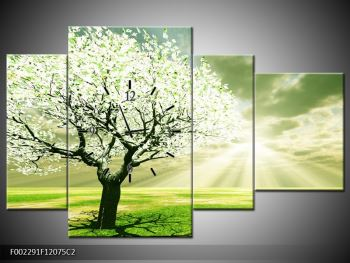 Obraz stromu na jaře (F002291F12075C2)