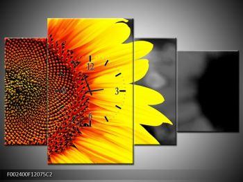 Obraz květu slunečnice (F002400F12075C2)