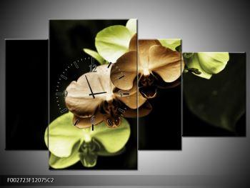 Obraz hnědých a zelených orchideí  (F002723F12075C2)
