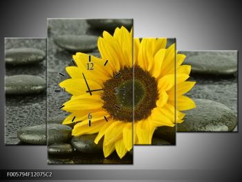 Moderní obraz F005794F12075C2 (F005794F12075C2)