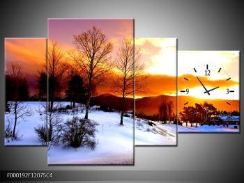 Obraz zimní krajiny (F000192F12075C4)
