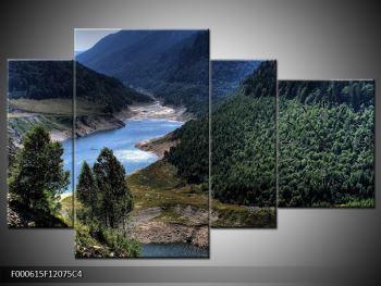 Obraz řeky a hor (F000615F12075C4)