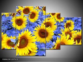 Obraz slunečnic (F000619F12075C4)