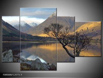 Obraz hor u jezera (F000686F12075C4)