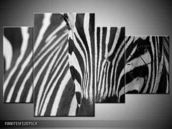 Obraz černobílého detailu zebry (F000715F12075C4)