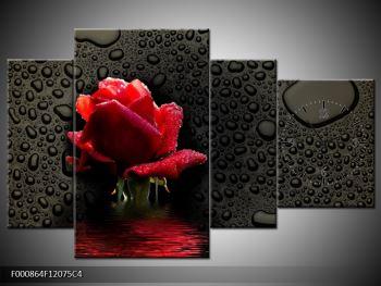 Obraz červené růže (F000864F12075C4)