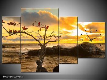Obraz suchého stromu (F001464F12075C4)