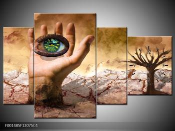 Obraz oka na dlaňi (F001485F12075C4)