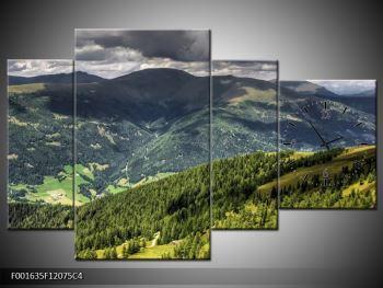 Obraz horského údolí (F001635F12075C4)