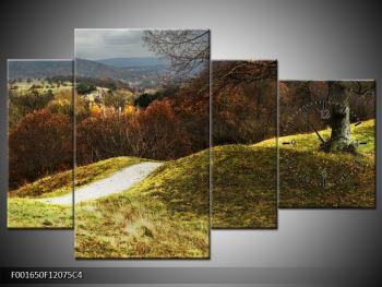 Obraz podzimního pahorku (F001650F12075C4)