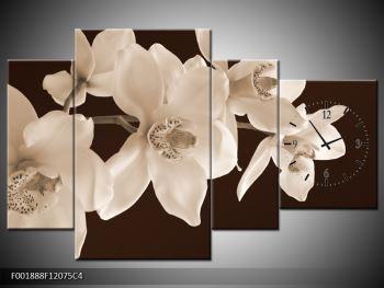 Krásný obraz bílých květin (F001888F12075C4)