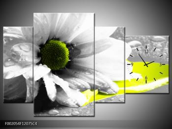 Obraz květiny a kapek rosy (F002054F12075C4)