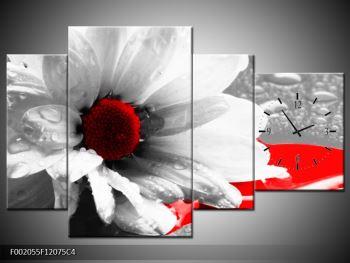 Obraz květiny  (F002055F12075C4)