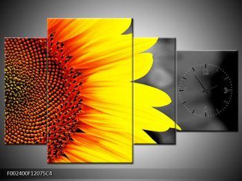 Obraz květu slunečnice (F002400F12075C4)