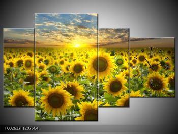 Obraz slunečnic při západu slunce  (F002612F12075C4)