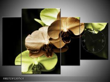 Obraz hnědých a zelených orchideí  (F002723F12075C4)