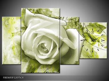 Obraz bílé růže na zeleném pozadí  (F003693F12075C4)