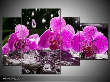 Obraz fialových orchidejí za deště (F004025F12075C4)