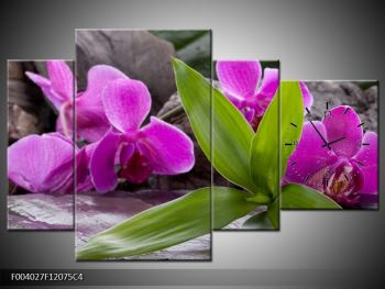 Obraz fialových orchidejí s listím (F004027F12075C4)