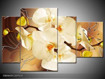 Krásný obraz orchidejí (F005693F12075C4)