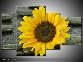 Moderní obraz F005794F12075C4 (F005794F12075C4)