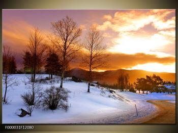 Obraz zimní krajiny (F000031F12080)