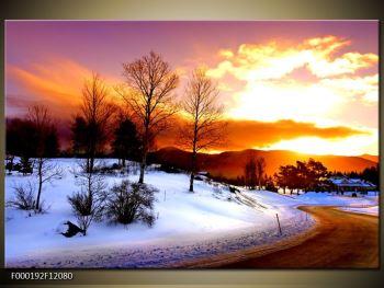 Obraz zimní krajiny (F000192F12080)