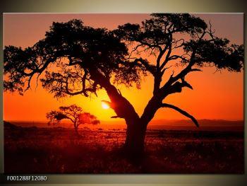 Obraz ohnivého západu slunce (F001288F12080)