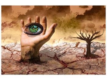 Obraz oka na dlaňi (F001485F12080)