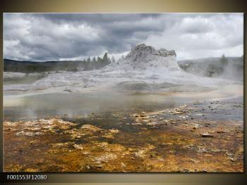 Obraz jev přírody (F001553F12080)