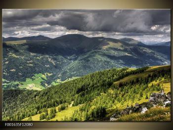 Obraz horského údolí (F001635F12080)
