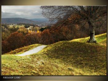 Obraz podzimního pahorku (F001650F12080)