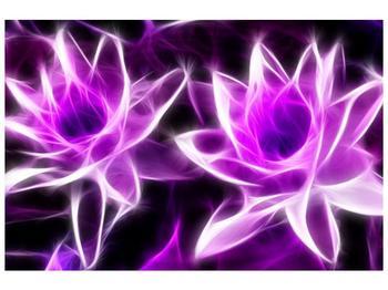Moderní obraz květin (F001725F12080)