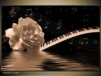 Černobílý obraz růže a klavíru (F001875F12080)
