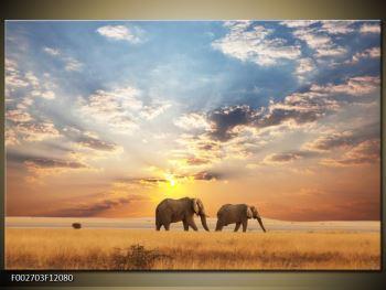 Obraz slonů putujících svanou  (F002703F12080)