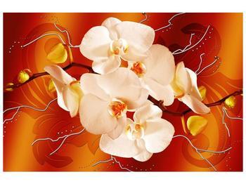 Obraz bílých orchidejí (F005694F12080)