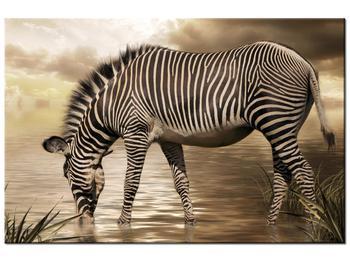 Obraz zebry (K011110K12080)