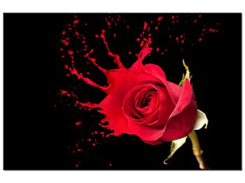 Obraz ruže (K011216K12080)