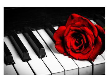 Zongora és egy rózsa képe (K011229K12080)