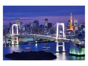 Obraz mostu (K011277K12080)