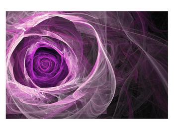 Moderný obraz fialovej ruže (K011482K12080)