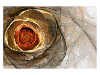 Moderní obraz růže (K011863K12080)