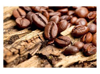 Obraz kávových zrn (K012413K12080)