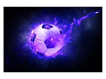 Tablou cu mingea de footbal în plasă (K014164K12080)